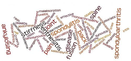 Wordle SpA