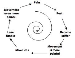 The below is a graphic that helps represent what many of the patients have been through in the past.