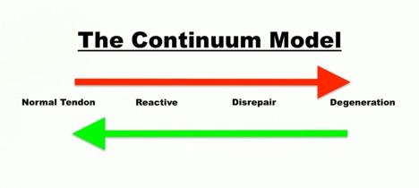 The Continuum Model